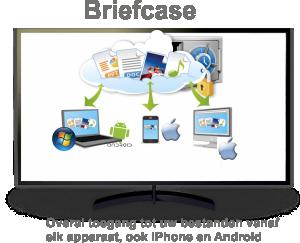fs_briefcase